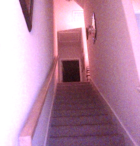 Stairs in purple